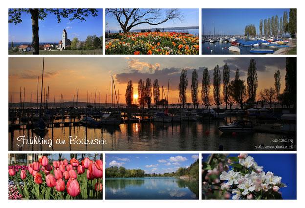 Bodensee - April 2014 (Postkarte design swissmountainview.ch)