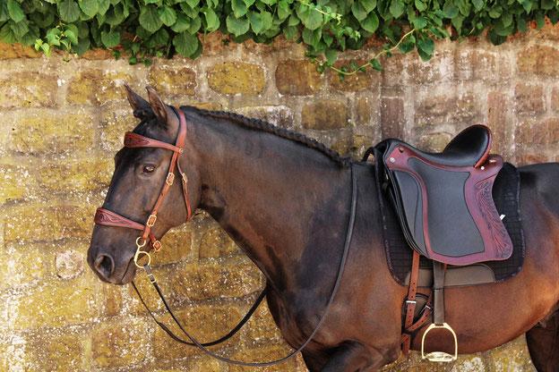 """Titelbild zum Impols Décor, hier zu sehen """"in Aktion"""" auf dem Pferd."""