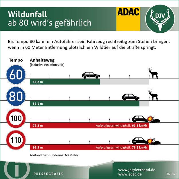 Je schneller die Geschwindigkeit des Autos, desto länger ist der Anhalteweg. Quelle: DJV