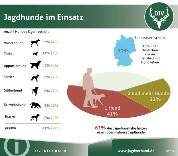 Jäger sind Hundeliebhaber: In zwei von drei Jägerhaushalten lebt mindestens ein Vierbeiner. Quelle: DJV