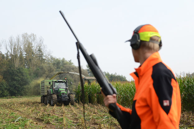 Sicherheit bei der Erntejagd fängt bei der Signalkleidung an. Quelle: Kauer/DJV
