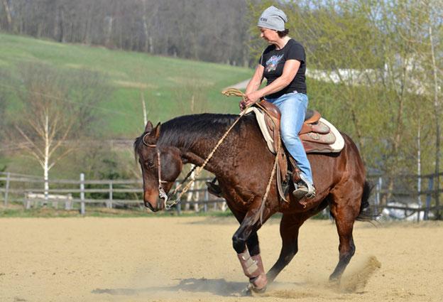 Reinhard Hochreiter bietet Reining-Kurse und Reining-Unterricht.