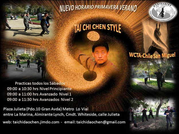 WCTA Chile Tai Chi en San Miguel todos los Sabados