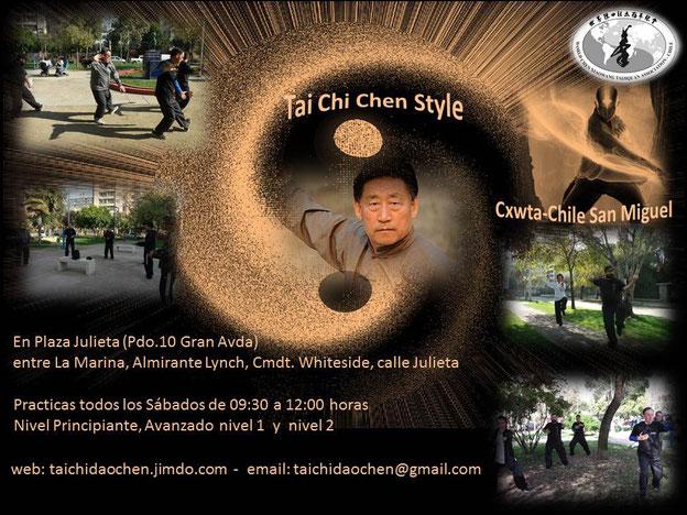 taijiquan, chi, taichi, chen, cxwta, wctag, jan, xiaowang, instructor, practicas, clases
