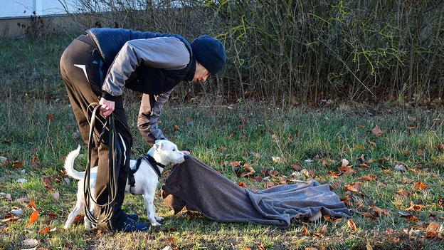 Beim Anreizen wird dem Hund sowohl der Geruchsartikel der Person als auch die Belohnung gezeigt.