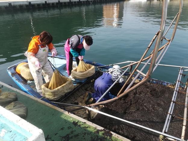 船の上で作業する人たち