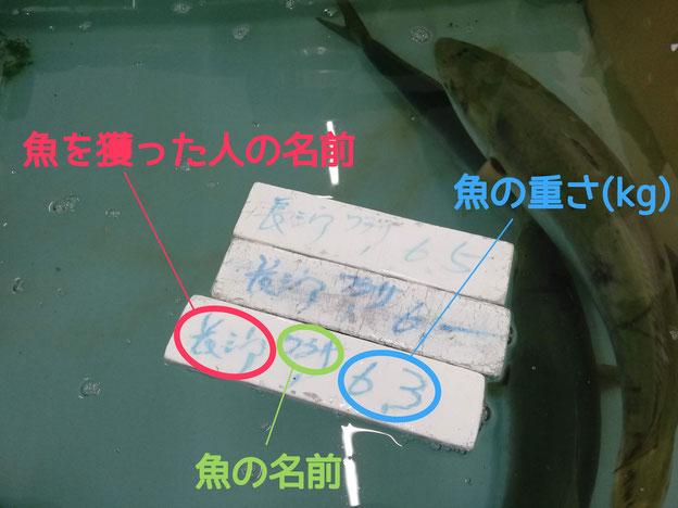 水槽の中の表示の説明