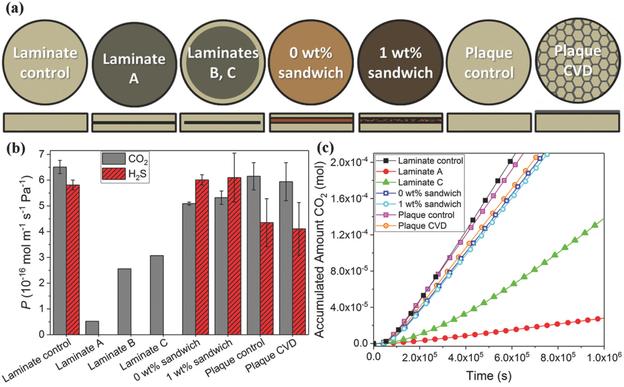 CO2 und H2S Permeation durch Graphen-Polyamid-Laminate als Barrieren zur Permeationsvermeidung