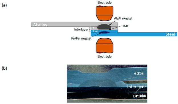(a) Schematische Darstellung eines Bimetallstreifens, der als Übergangsverbindung zwischen Aluminium- und Stahlblechen verwendet wird. Die weiße Linie auf der Grenzfläche Al-Legierung/Stahl weist auf die intermetallische Schichtbildungsregion hin