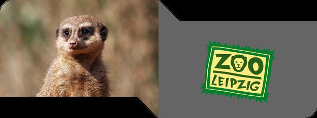 Zoo Leipzig auf immerwiederleipzig.de