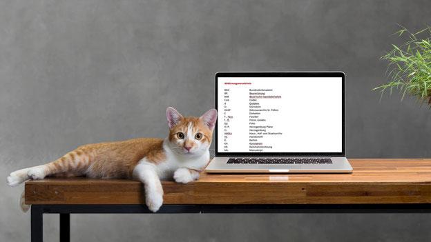 Eine Katze, die auf einem Tisch neben einem Laptop liegt