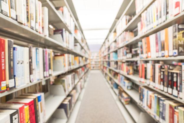 Bibliothek mit zwei Bücherregalen