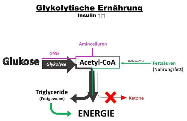 Diät für Triglyceride und hohe Glukose