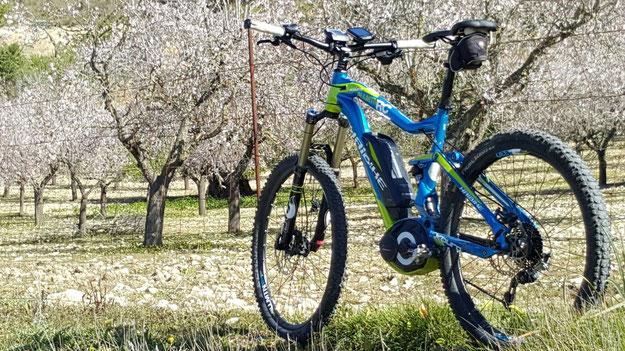 e-Bike fahren auf Malloraca mit einem Haibike XDURO AllMtn