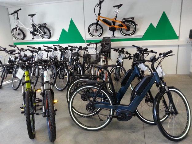Neue e-motion e-Bike Welt München West feiert Eröffnung mit zahlreichen e-Bikes