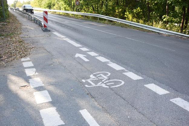 Optimisten: Auf der Norderstedter Seite ist noch dieses Verkehrszeichen zu finden, das einen Radweg in beide Richtungen vorschreibt.