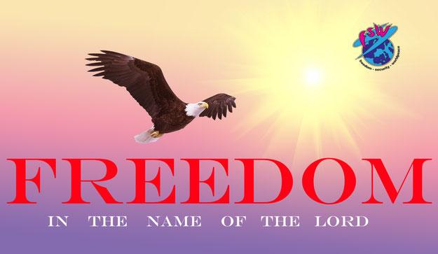 Weisskopfseeadle Weisskopfseeadler im Sonnenlicht mit dem Logo Weltkugel. Text: Freedom in the  name of the lord