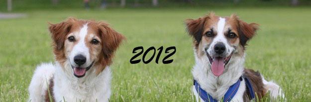 Bilder und Berichte von Bonny und Amy aus dem Jahr 2012