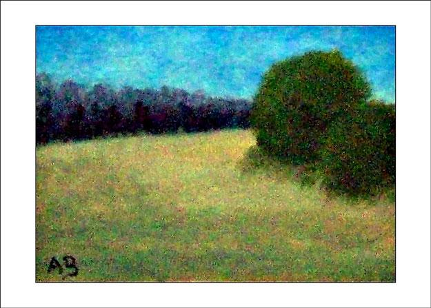 Wolkenhimmel, Wald, Feld, Büsche und Bäume im Vordergrund