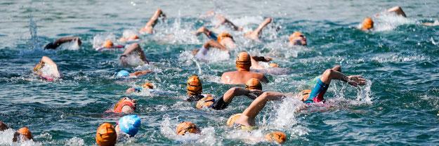 VOLKSBANK Ausee Triathlon Blindenmarkt