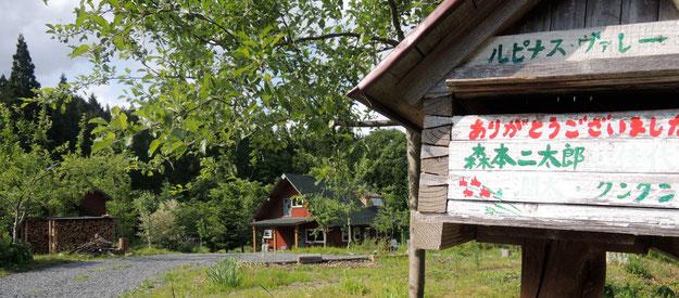 この母家は手作り!緩やかな傾斜にそって、野菜畑、果樹、様々な山野草や花木。写真の作業小屋。。。