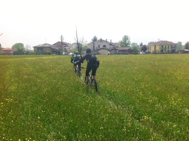 rientrati a Piossasco si va in camporella, salutiamo  Giorgio e Max che proseguono verso San Valeriano