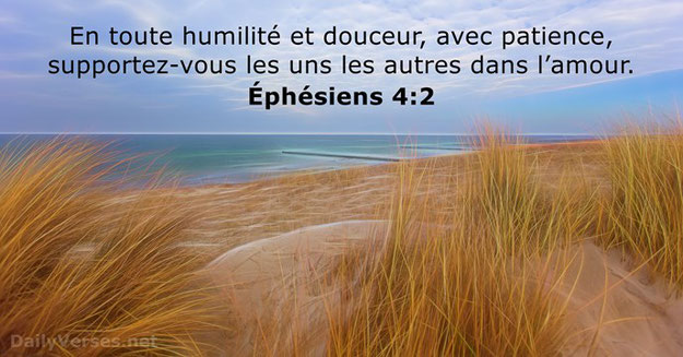 La patience est un fruit de l'esprit saint de Dieu. La patience nous permet de supporter les autres avec humilité, douceur et dans l'amour. L'apôtre Paul nous encourage à faire preuve de patience envers tous.