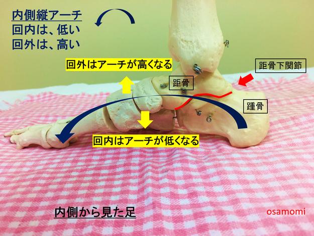 内側縦アーチ 偏平足 昭島市の足膝専門、オサモミ整体院。