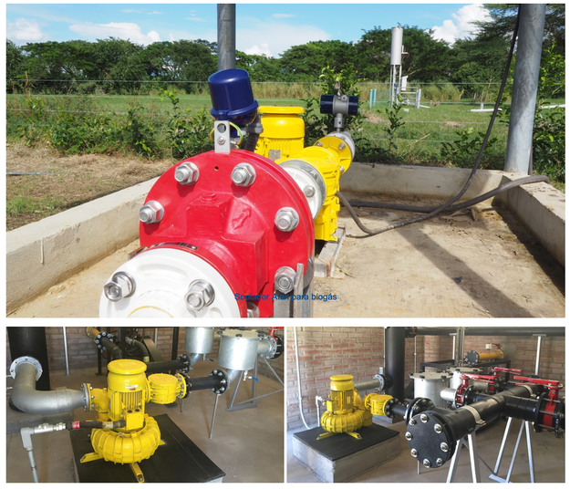 Blowers for biogas plants