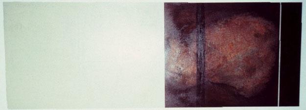 Nr. 2003-HO-019: 140 x 50 cm, Acryl auf MDF