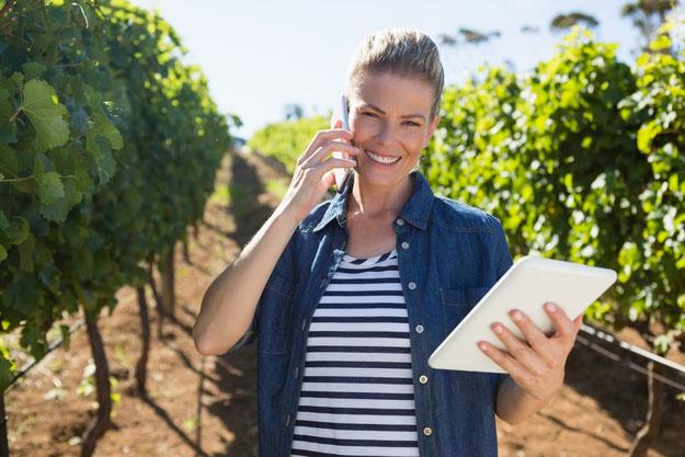 La transformation digitale de la filière vitivinicole pourrait virer au cauchemar !