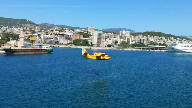 """Hafen von Palma de Mallorca. Löschflugzeug kurz vorm """"auftanken""""."""