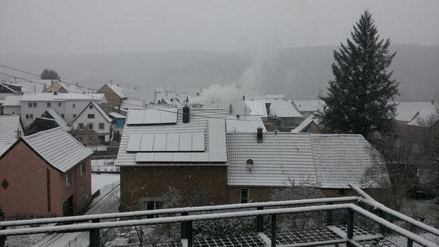Leben mit der Energiewende TV - Rehborn im Schneefall