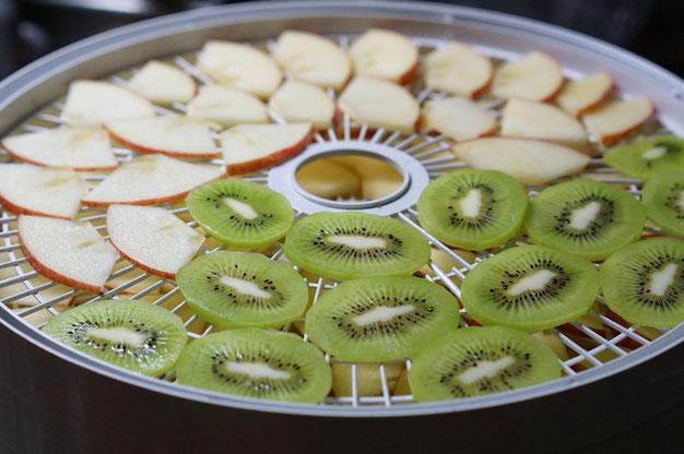 仲本律子 R工房 女性陶芸家 土鍋作品 ブログ ドライ 保存食品 リンゴ キウイ
