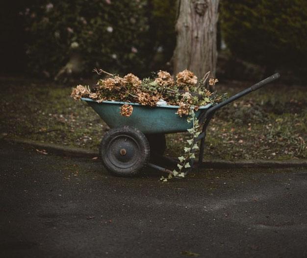 Tuinkalender april - Welke tuinklussen kun je doen?