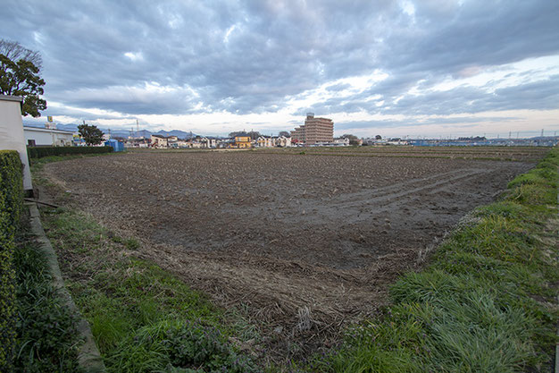 昨年4月より定点観測してきた泉橋酒造が栽培する雄町の田んぼ。今回で最終回です。季節ごとに変化を見せるこの光景が、時代が変わっても脈々と繰り返されていくことを祈ります。