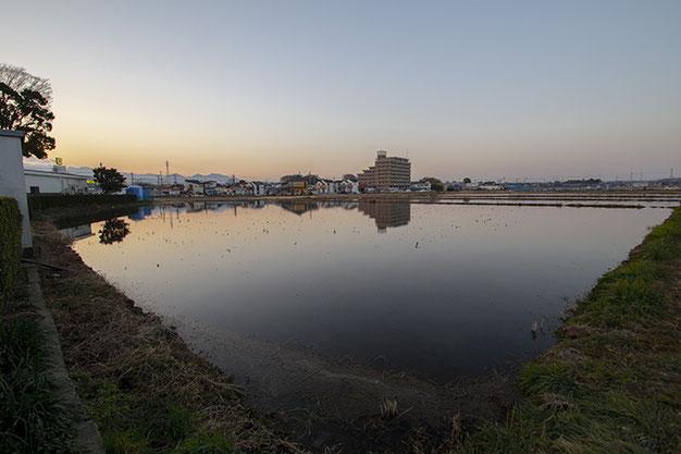 日没直後の冬季湛水田。冷たく澄んだ空気、音のないこの景色が「田んぼとは神聖な場所」なのだと思い出させる。