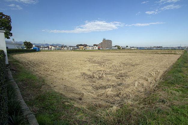 無事に収穫を終えた田んぼ。少しさみしい・・・けど、澄んだ空気が心地良い。次は冬期湛水!