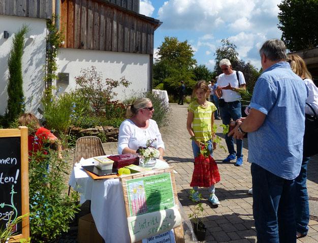 Hereinspaziert zur Offenen Gartenpforte am Nöckersberg 33: Pflanzen- und Gartenfans ließen sich nicht vom Wetter beeindrucken