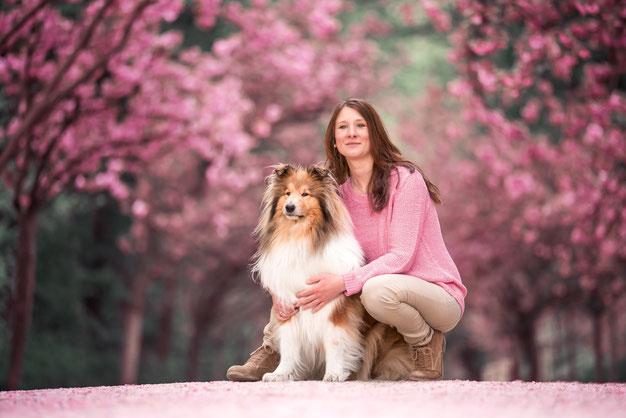 Hundephysiotherapie Pferdephysiotherapie