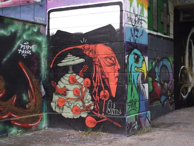 Street art, graffiti, Danube Canal, Vienna, Austria, Europe