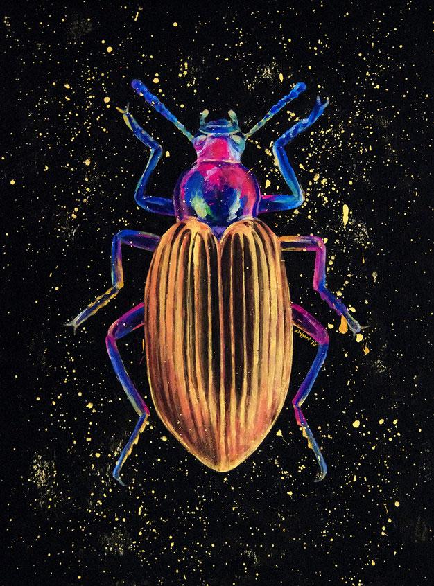 Ewelina Wajgert, beetle painting