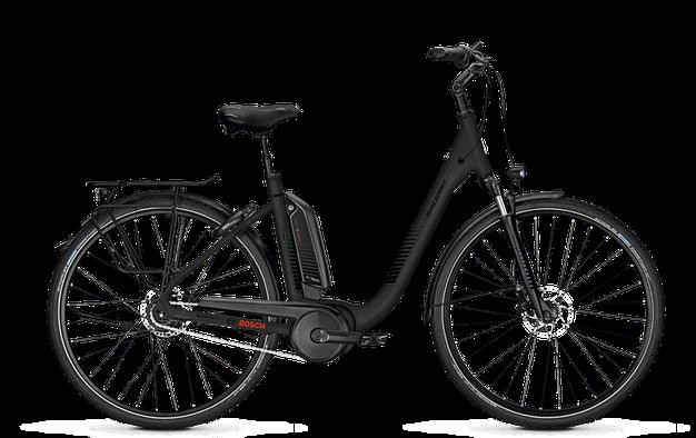 Raleigh Kingston XXL - City e-Bike - 2018