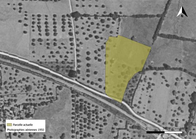 Localisation de la parcelle actuelle projetée sur les images aériennes des années 50. La grande majorité des parcelles sont alors composées de vergers.  IGN/Nicolas Blanchard
