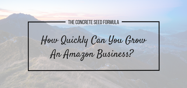 Growing Amazon Business