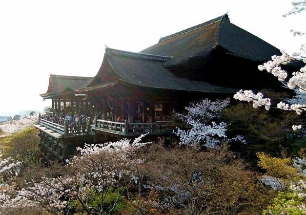 "Le Hondo vu depuis la véranda du temple intérieur ""Oku-no-in"" (appelé aussi Amida-Do Buddha hall)"
