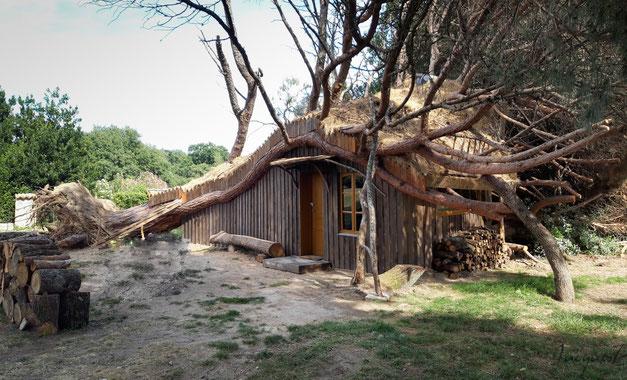 Bienvenue dans cette cabane extraordinaire en plein cœur du Domaine des Pindouls !