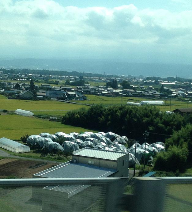 高速バスの車窓から見る佐久平のぽこぽこ