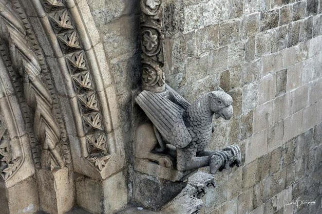 Cattedrale di Larino grifo che ghermisce un animale