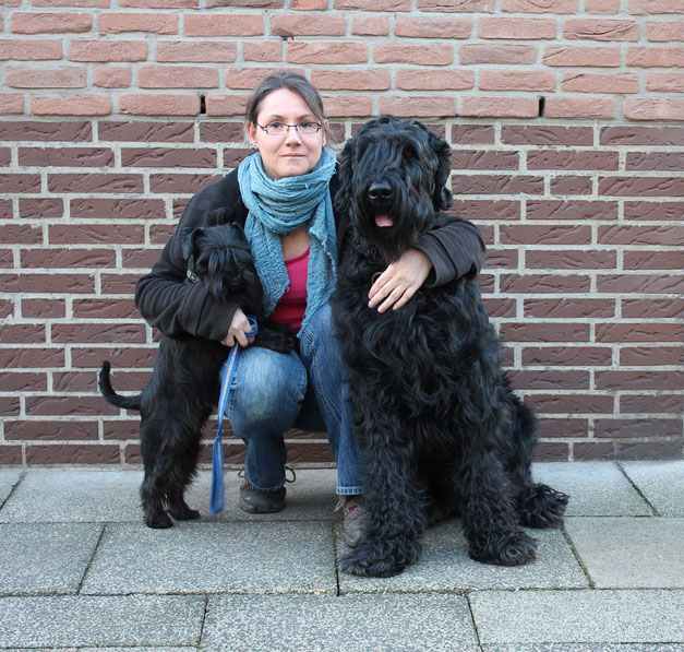 Hundephysiotherapie Bremen